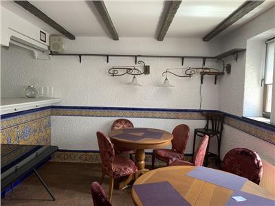 Inchiriere vila 7 camere Cismigiu, Bucuresti