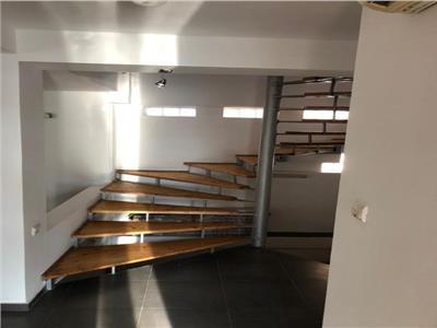 Vanzare vila 4 camere  zona Tineretului parc