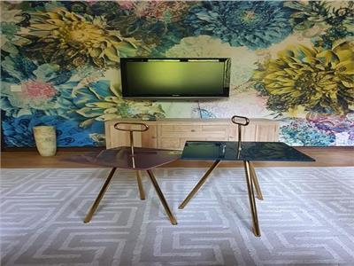Apartament 2 camere / Aviatiei /lux