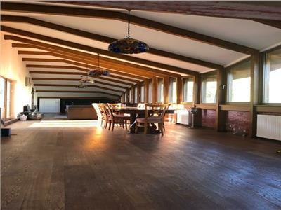 oferta inchiriere mansarda / loft in vila zona cotroceni Bucuresti